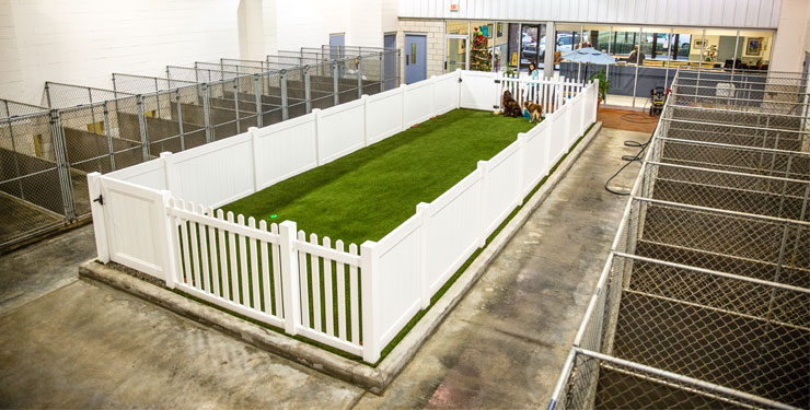indoor pet park
